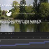 Ep 4 – Compositions in Adobe After Effects